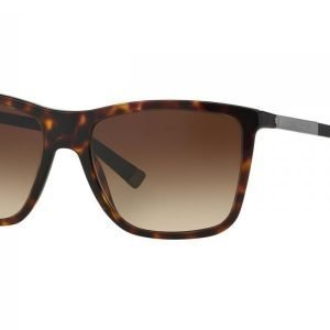 Dolce & Gabbana Basalto Collection DG4210 502/13 Aurinkolasit