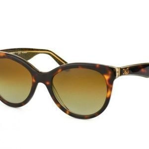 Dolce & Gabbana DG 4192 2738T5 Aurinkolasit