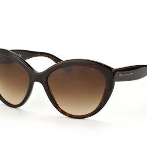 Dolce & Gabbana DG 4239 502/13 Aurinkolasit