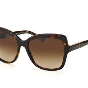 Dolce & Gabbana DG 4244 502/13 Aurinkolasit