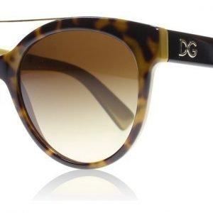 Dolce and Gabbana 4280 295613 Havanna Aurinkolasit