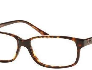 Kam Dhillon KD3805-Brown silmälasit