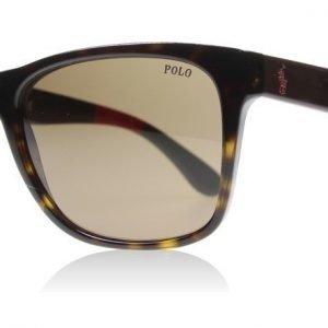 Polo 4106 556873 Kiiltävä havanna Aurinkolasit