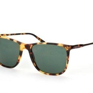 Polo Ralph Lauren PH 4102 5004/71 Aurinkolasit