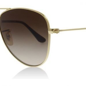 Ray-Ban Junior RJ9506S 223/13 Kulta Aurinkolasit