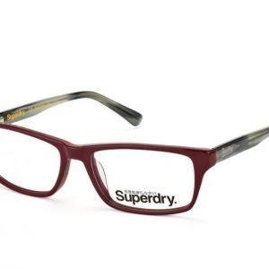 Superdry Murray 162 Silmälasit